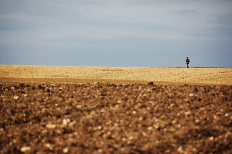 Spaziergänger im Flachter Feld