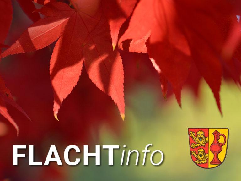 FlachtInfo3_Herbst