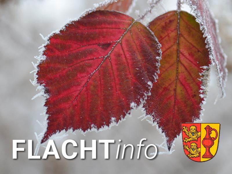 FLACHTinfo