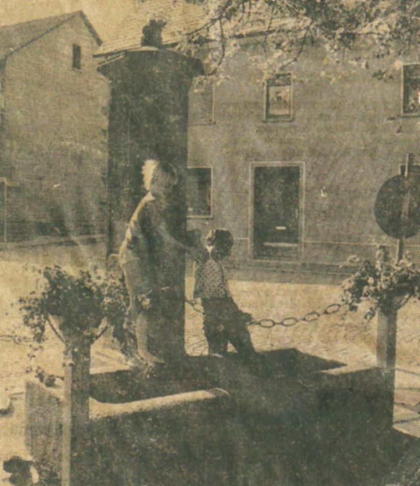 Historischer Dorfbrunnen, Sommer 74 oder 75